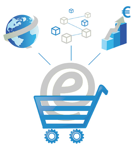 What an Ecommerce Website Developer Can Do for You